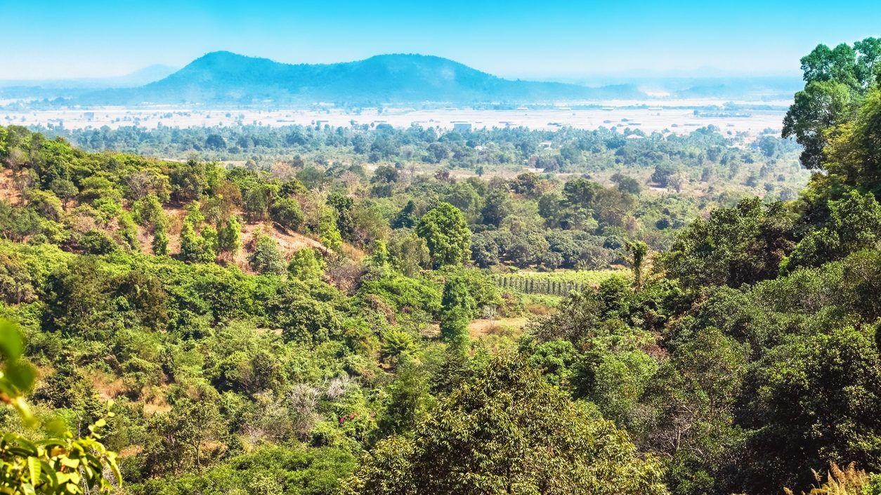 Elveszett metropoliszra bukkantak az esőerdőben