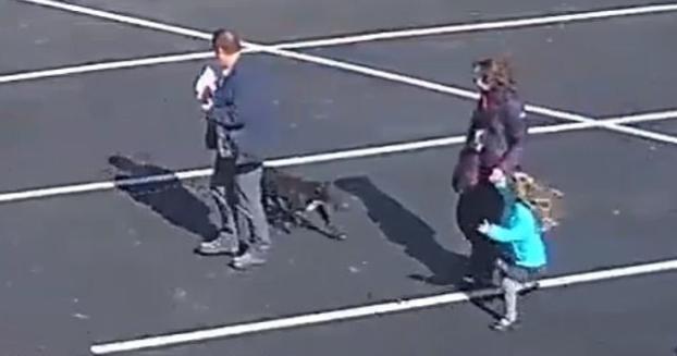 A semmiből támadt rá egy kutya az ötéves kislányra – a szülei kezéből rángatta ki